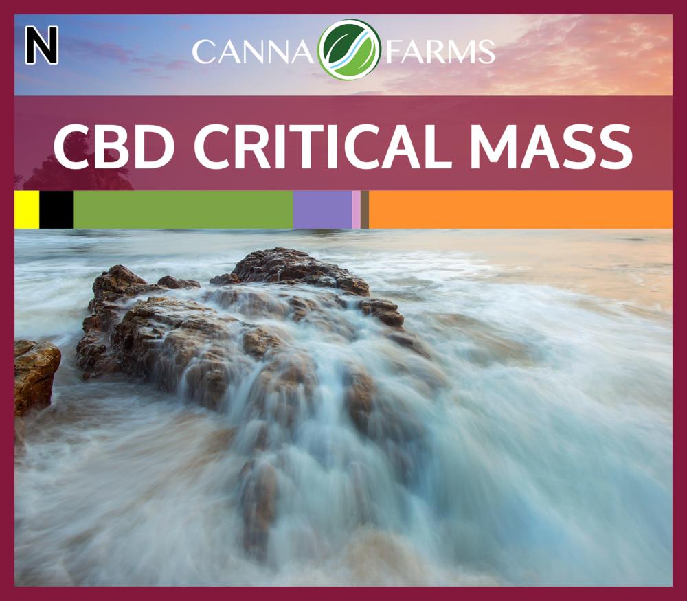 cannafarms cbd critical mass